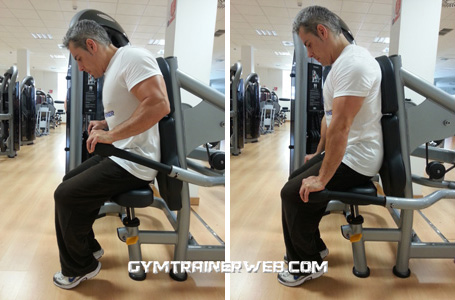 Triceps Dips Machine