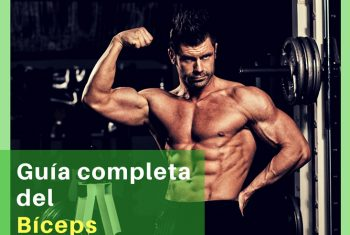 The complete guide of biceps